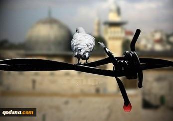 فلسطین در کلام  شهید مطهری 2